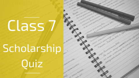 Class 7 - Maths Scholarship Quiz